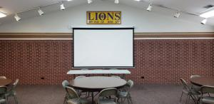 Lions Screen